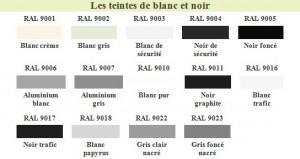RAL Blanc et noir